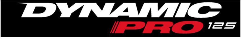 Logo Dynamic pro AKT